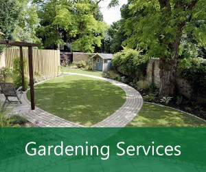 Gardening Services Garden Maintenance in Orpington Kent